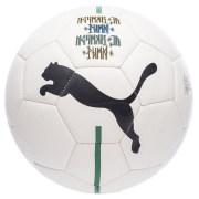 PUMA Fodbold Fan Neymar Jr. - Hvid/Sort/Gul/G